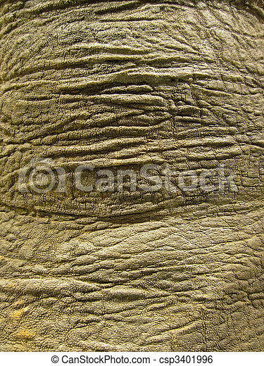A Elephant Skin Texture, Structure, Background - csp3401996