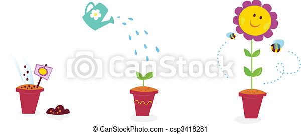 Garden flower growth stages - sunflower - csp3418281