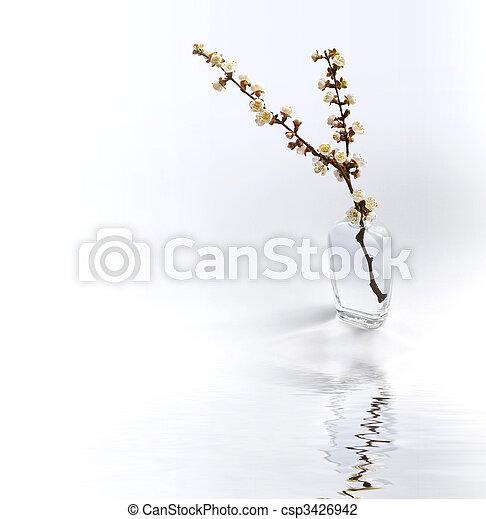 twig - csp3426942