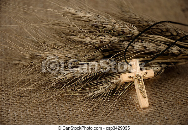 Christian Cross And Wheat - csp3429035