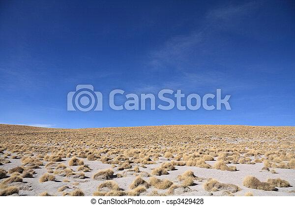 Altiplano landscape - csp3429428