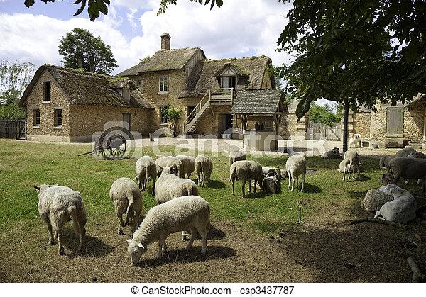 Versailles - Medieval Farm - csp3437787