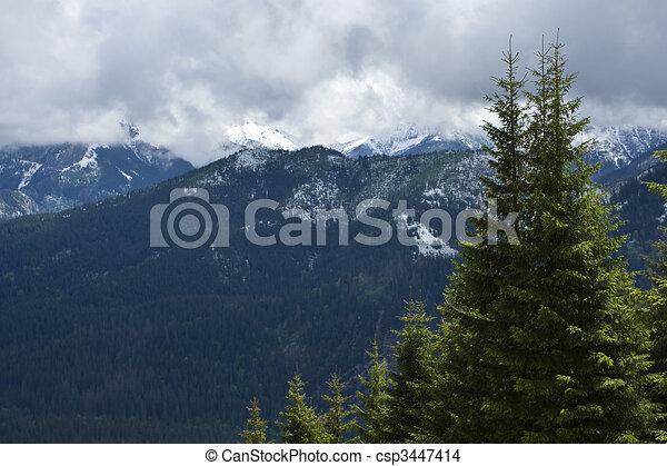 Mountains spring - csp3447414