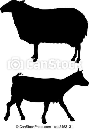 Farm animals - csp3453131