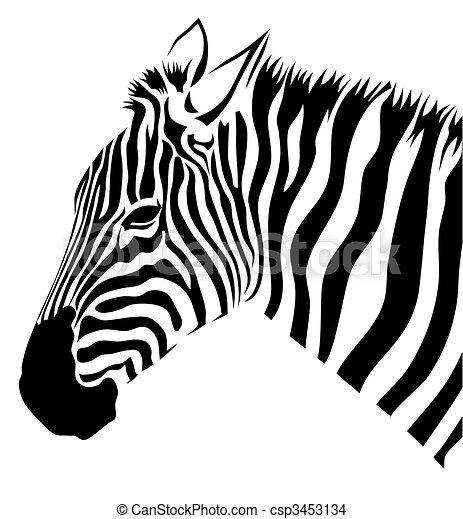 Zebra - csp3453134