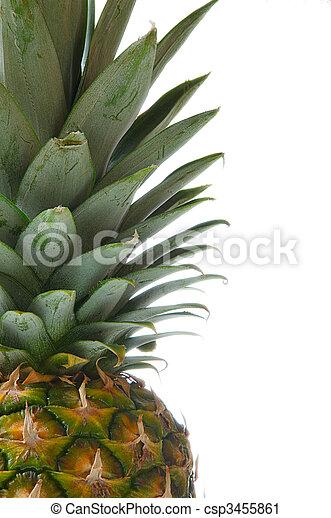 fragment Of Pineapple - csp3455861