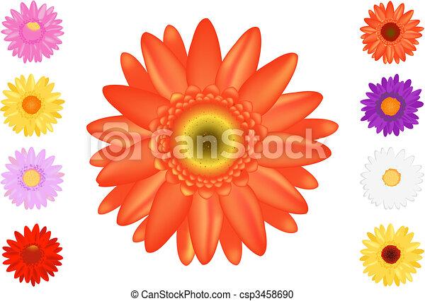 Colourful Gerbers Set - csp3458690