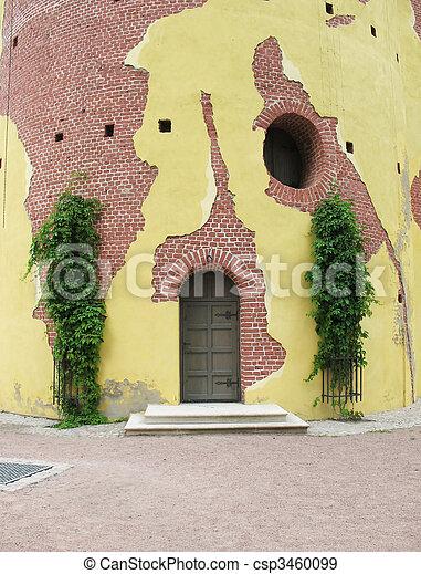 Grapes on the wall of the Tower of Ruin. Pushkin (Tsarskoe Selo) - csp3460099