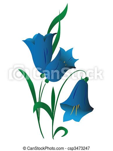 Campanula, flower - csp3473247