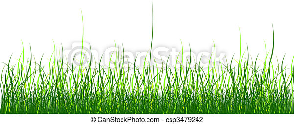 Green grass - csp3479242