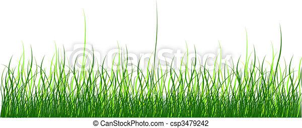 Green grass - csp3479242