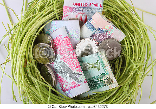 UAE money dirhams in a nest - csp3482278