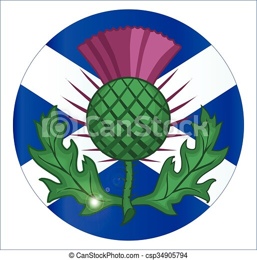 Scotish Flag And Thistle Button - csp34905794