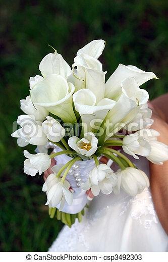 fiori, matrimoni, usato - csp3492303