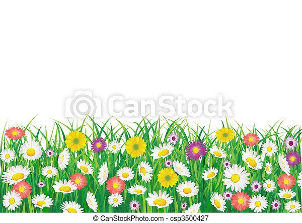 Flower field - csp3500427