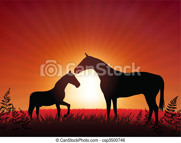 horse with kid on sunset background - csp3500746