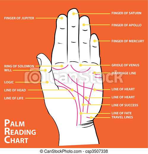 Palmistry map of the palm\'s main lines - csp3507338