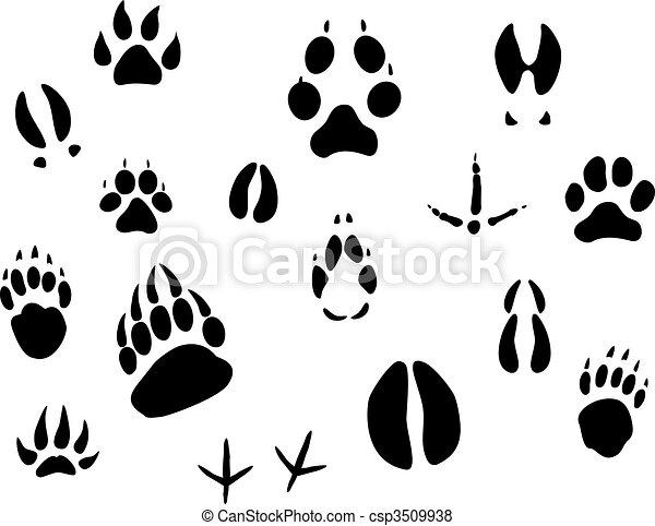 Animal footprints - csp3509938