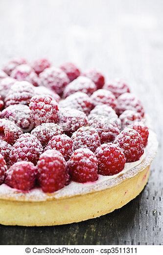 Raspberry tart - csp3511311
