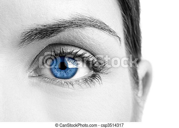 Blue eye - csp3514317