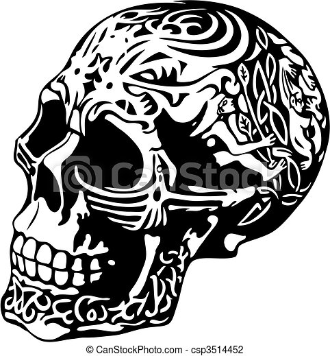 Decorated Skulls Drawings Skull With a Decorative