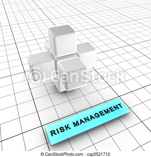 2-Risk management (2/6) - csp3521712