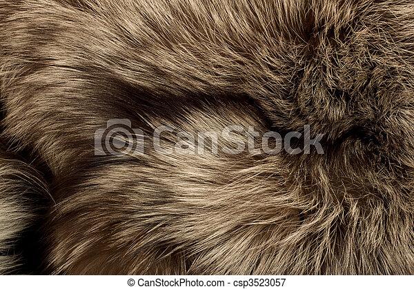 Polar Fox fur. Useful as texture - csp3523057