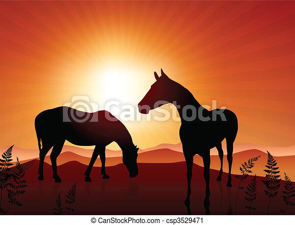 Horses grazing on sunset background - csp3529471