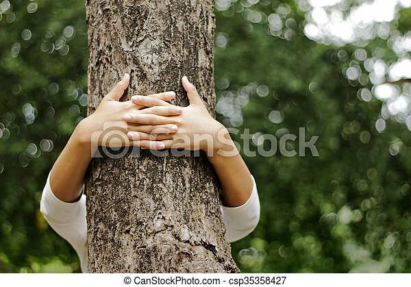 Hands hugging a trunk of a tree in summer park - csp35358427