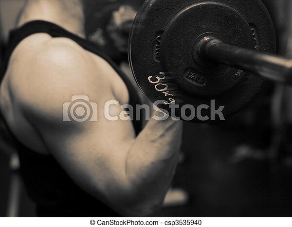 training barbell gym strength - csp3535940