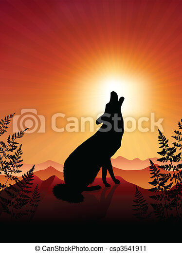 Wolf Howling on sunset background - csp3541911