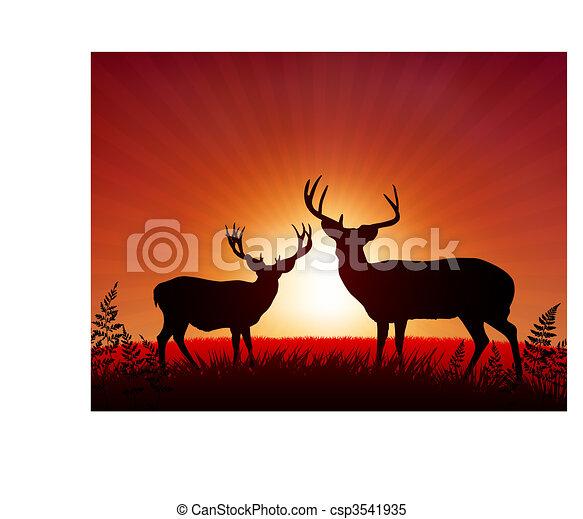 Deer on Sunset Background - csp3541935