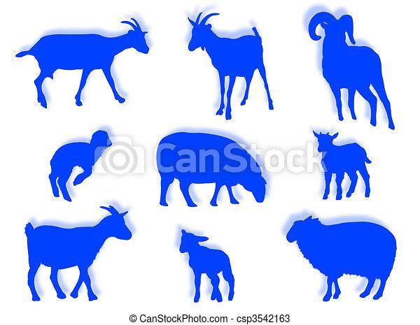 sheep, silueta, cabras - csp3542163