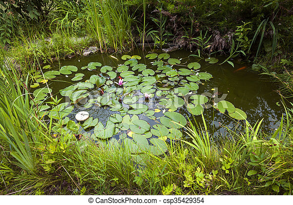 Small landscaping pond - csp35429354