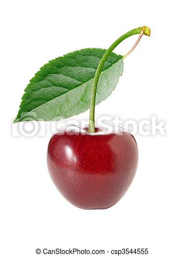 Cherry. - csp3544555