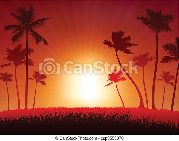 Tropical Sunset Background  - csp3553070