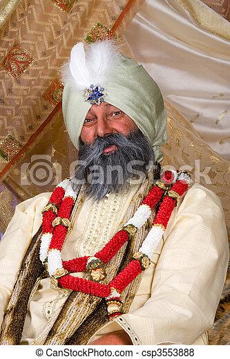 Indian portrait - csp3553888