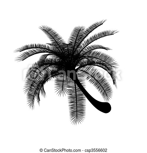 Palm Trees Black And White Black on White Palm Tree