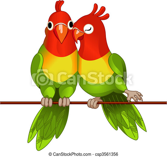 Pair of lovebirds - csp3561356