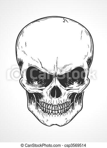 human skull - csp3569514