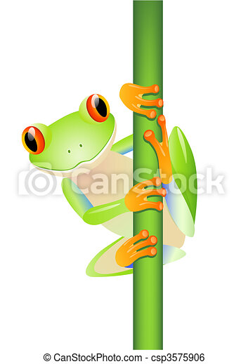 Vector green tree frog - csp3575906