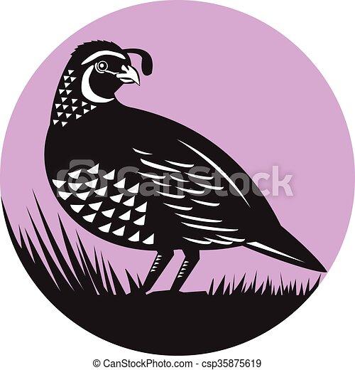 Vector Clip Art of California Valley Quail Bird Circle Retro ...