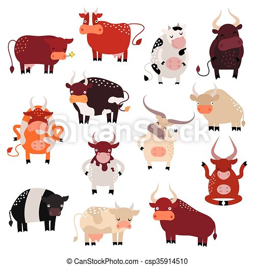 Mon bovin en action 1 - 1 1