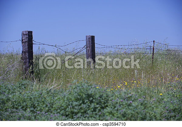 Rural scene of old wooden fence posts strung with barbed wire. - csp3594710