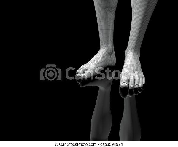 barefoot - csp3594974