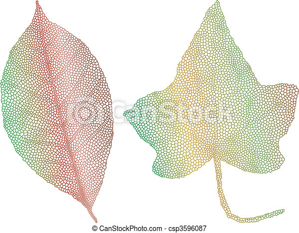 autumn leaves with delicate texture - csp3596087