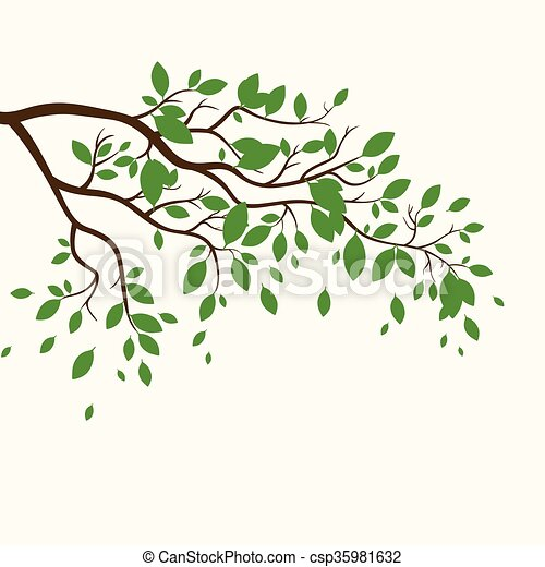 Vector Branch with Green Leaves - csp35981632