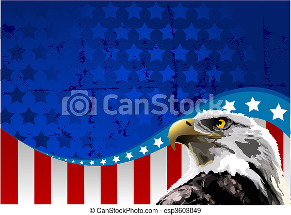 Bald Eagle American Flag - csp3603849
