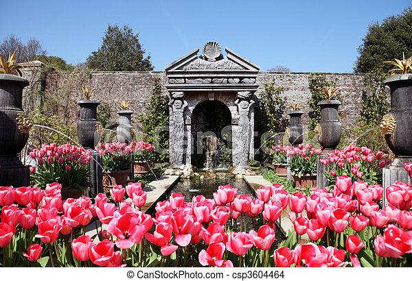 castle garden Arundel tulips - csp3604464