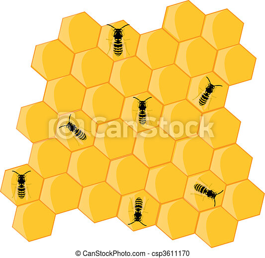honeybees on the hive - csp3611170